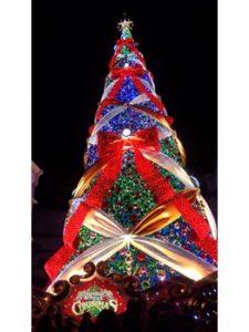 VANILLA【バニラ】大宮店クリスマスツリー ライトアップ